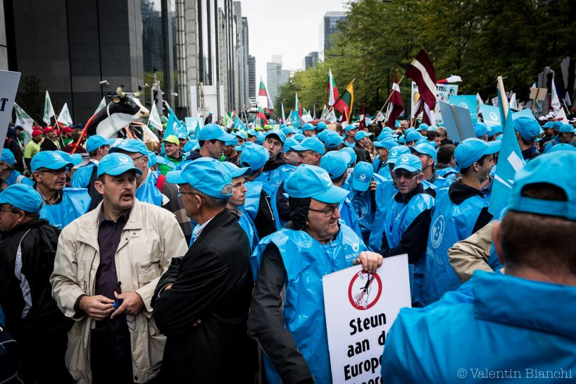Thousands of European farmers have converged to Brussels for the event to protest against falling prices. Here, farmers from BoerenBond wait the start of the protest. September 7th, 2015. © Valentin Bianchi